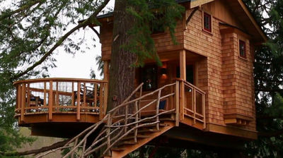 Treehouse Point 2.0