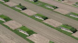Ezstreem - Aerial America