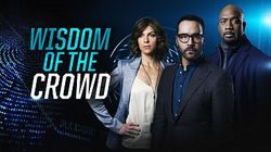 Wisdom of the Crowd Review - Who Needs the Police?