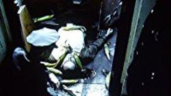WatchStreem - A Nero Wolfe Mystery