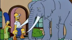 Bart Gets an Elephant
