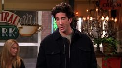 The One Where Ross Moves In