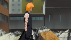 Goodbye...Rangiku