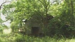 Ezstreem - Abandoned