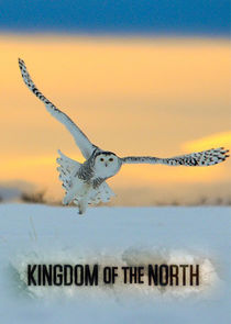 Kingdom of the North