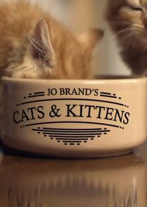 Jo Brand's Cats and Kittens