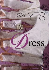 Say Yes to the Dress cover