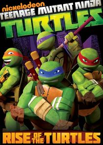 Rise of the Teenage Mutant Ninja Turtles cover