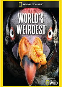 World's Weirdest