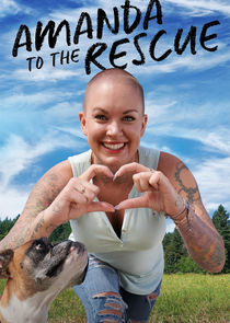 Amanda to the Rescue cover