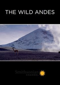 The Wild Andes cover