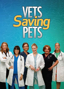 Vets Saving Pets cover