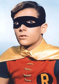 Robin the Boy Wonder / Dick Grayson