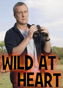 WatchStreem - Watch Wild at Heart