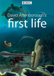 David Attenborough's First Life