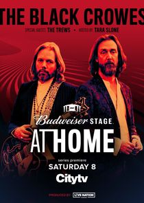 Budweiser Stage at Home