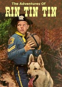 The Adventures of Rin Tin Tin
