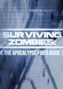 Surviving Zombies