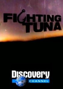 Fighting Tuna