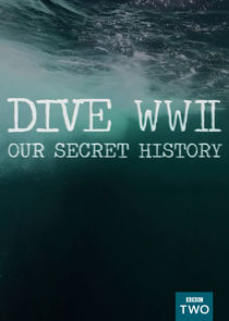 Dive WWII: Our Secret History