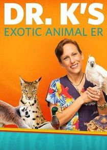 Dr. K's Exotic Animal ER: Gloves Off!
