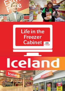 Iceland Foods: Life in the Freezer Cabinet