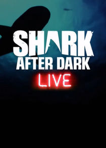 Shark After Dark