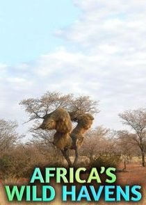 Ezstreem - Watch Africa's Wild Havens