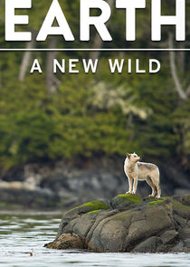 cover for Earth: A New Wild