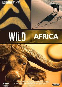 WatchStreem - Watch Wild Africa