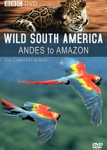 Andes to Amazon