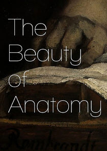 The Beauty of Anatomy