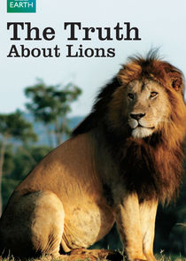 The Truth About Lions