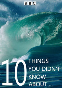 10 Things You Didn't Know About…