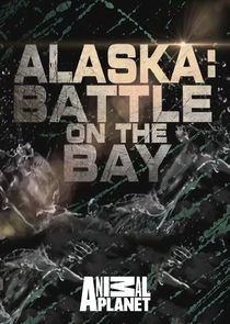WatchStreem - Watch Alaska: Battle on the Bay