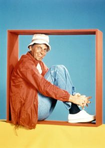 The McLean Stevenson Show