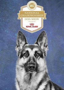 WatchStreem - Watch AKC National Championship Dog Show