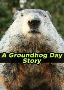 WatchStreem - Watch A Groundhog Day Story