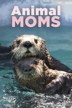 Animal Mums cover
