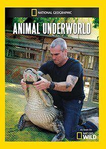 Animal Underworld cover
