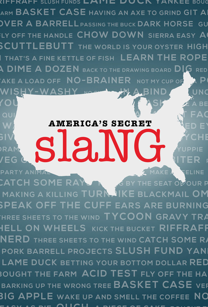 America's Secret Slang cover