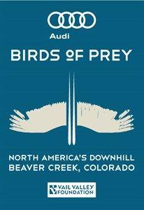 Audi Birds of Prey cover