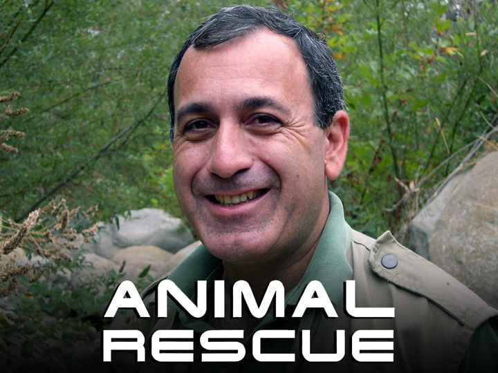 Animal Rescue cover