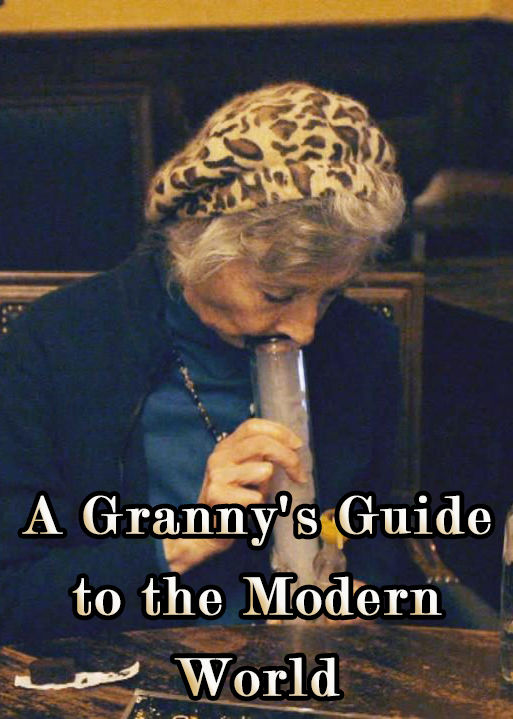 A Granny's Guide to the Modern World cover