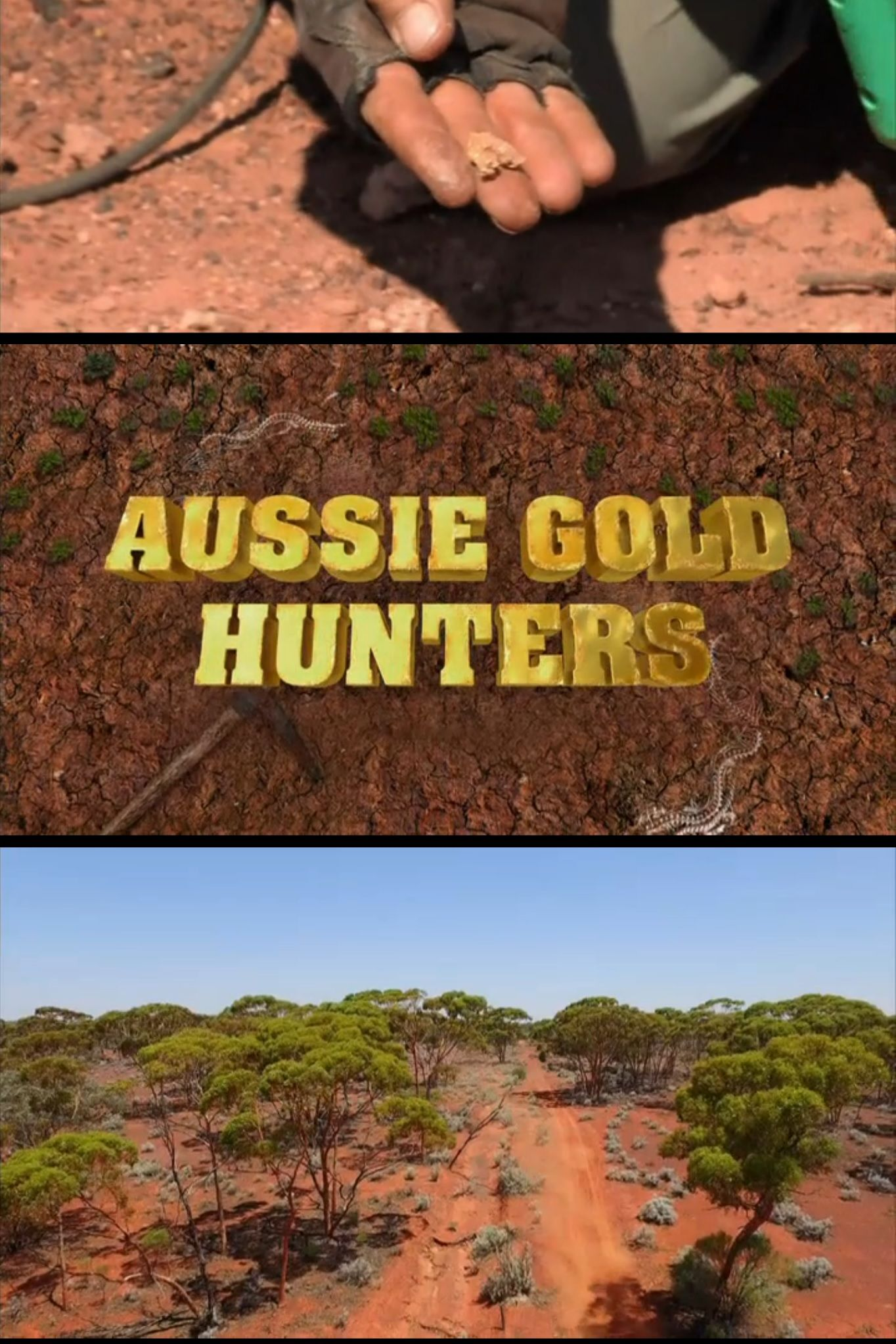 Aussie Gold Hunters cover