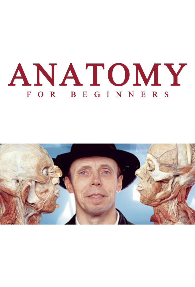 Anatomy for Beginners cover