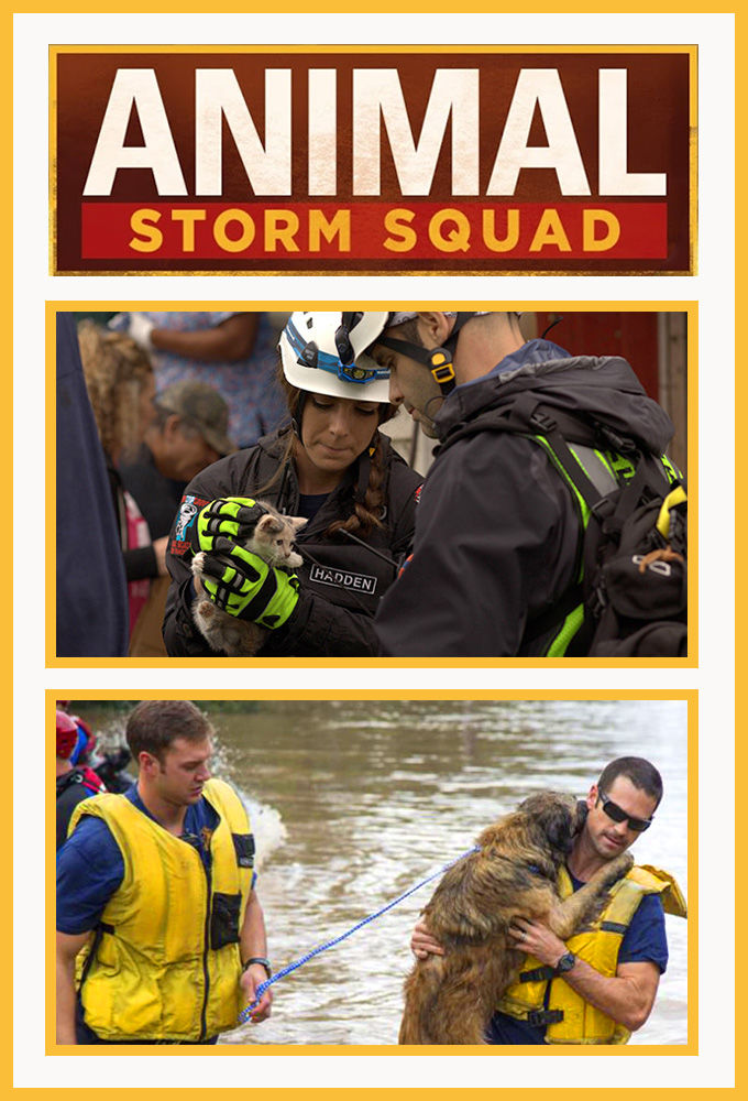 Animal Storm Squad cover