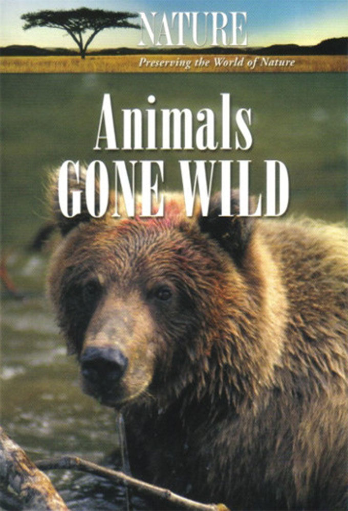 Animals Gone Wild cover