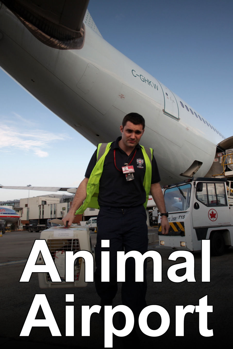 Animal Airport cover