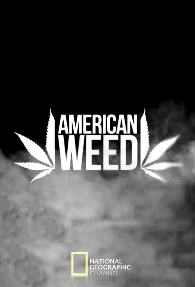 American Weed cover